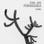 the-joy-formidable-cholla